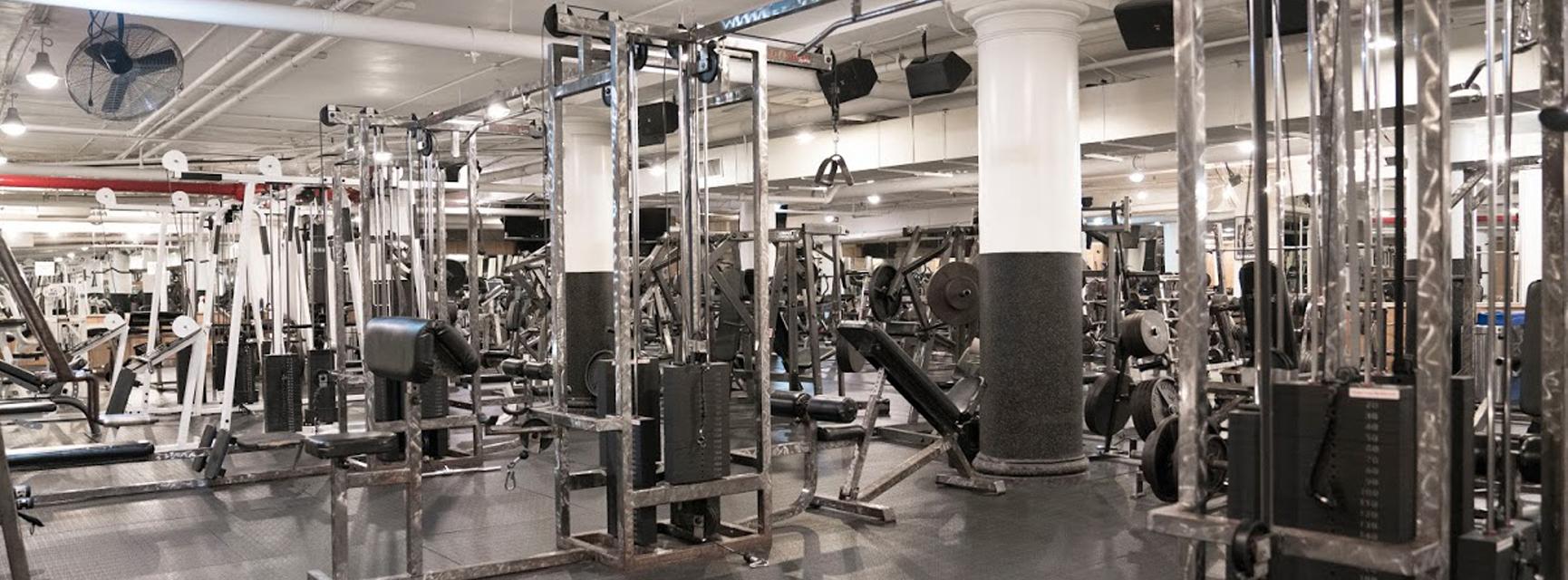 Chelsea Gym